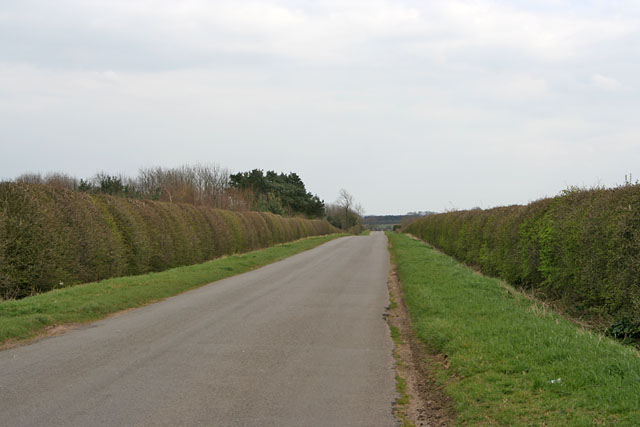 A Long Straight Road on Ropsley Heath