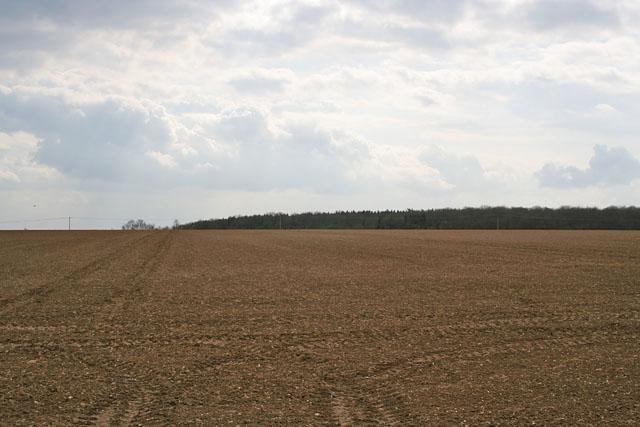 Farmland on Ropsley Heath