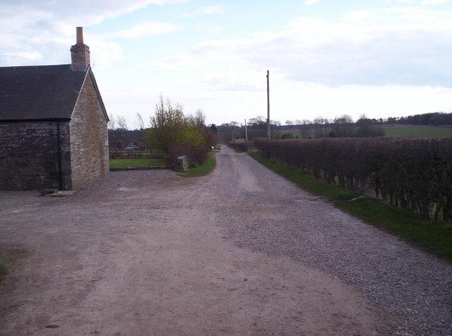 Track to Milton of Conon