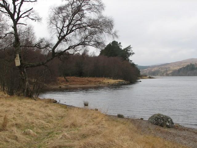 Loch Rannoch near Finnart Lodge