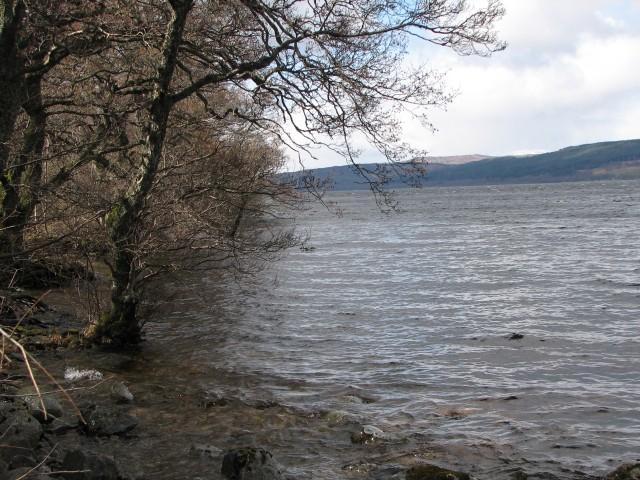 Shore of Loch Rannoch