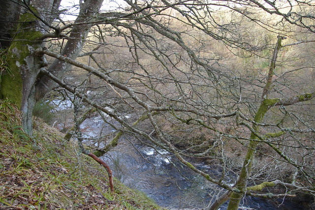 River Isla flowing through Den of Airlie near Ruthven