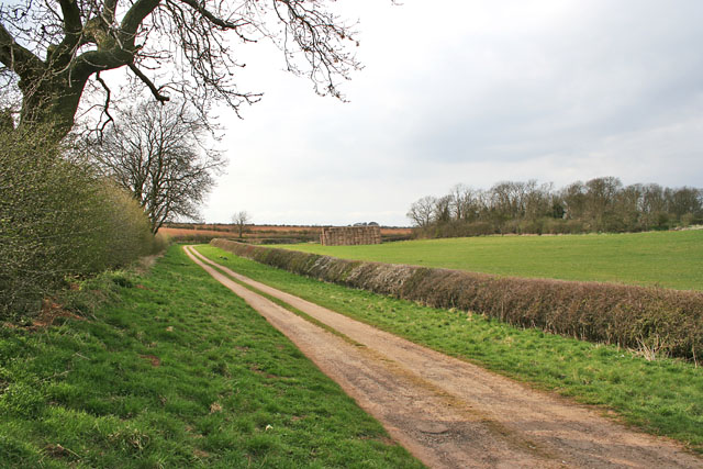Long Hollow near Braceby