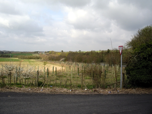 Minor road meets A303