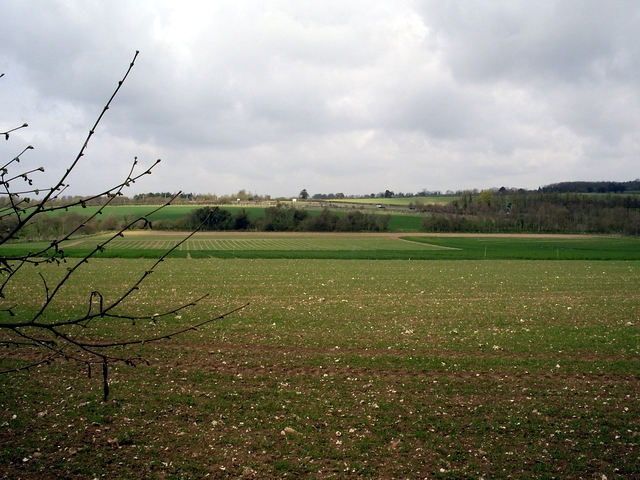 Fields south of A303