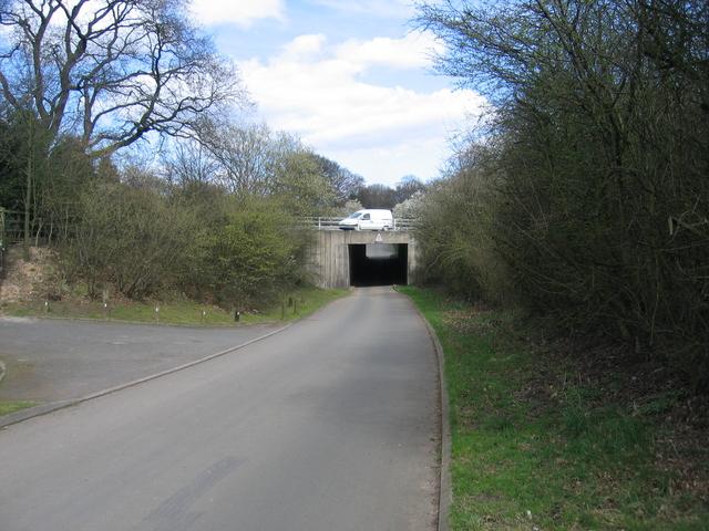 M42 bridge