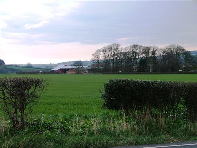 Thornton Fields