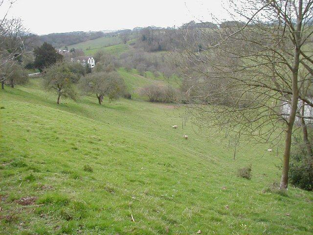 Roadside pasture