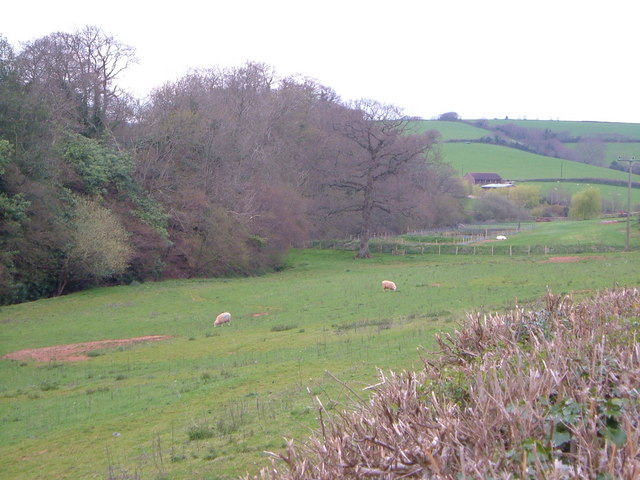 Valley near Exminster