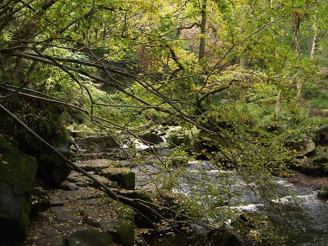 West Beck gorge