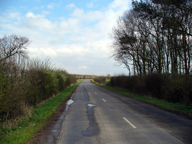 Looking towards Brocklesby