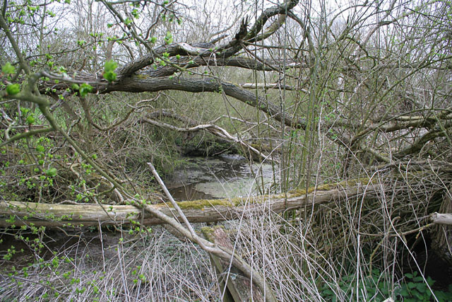 The Ring Dam at Ropsley
