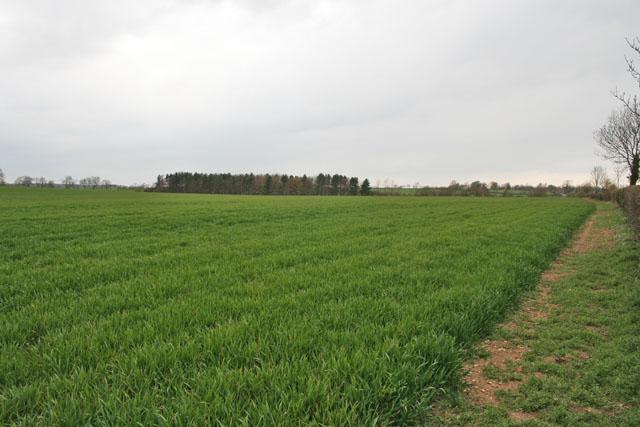 Farmland near Humby, Lincolnshire