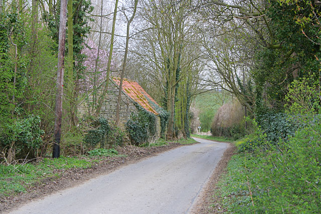 Country Road at Haceby, Lincolnshire