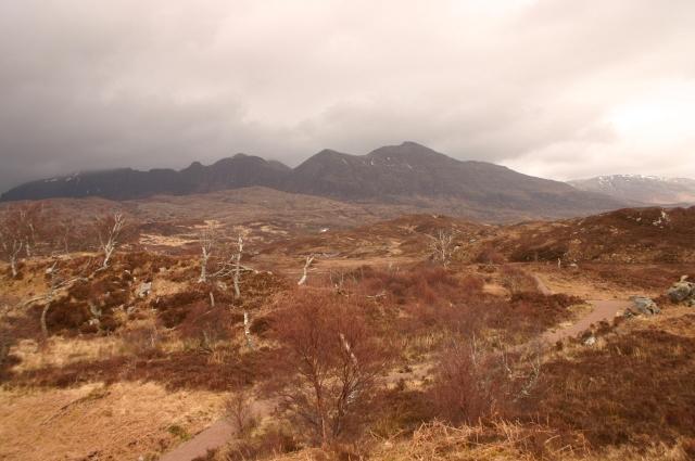Assynt Landscape