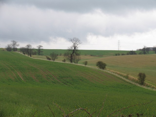 Fields opposite Woodnook Farm
