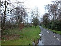SJ8370 : Colshaw Lane, Siddington Heath by michael ely