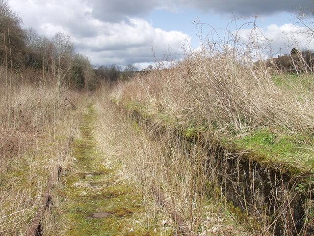 Porthywaen Halt, near Llynclys