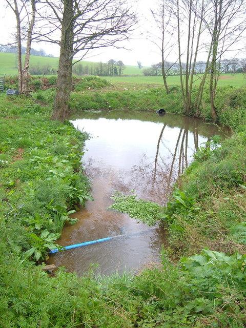Pond at Mowlish