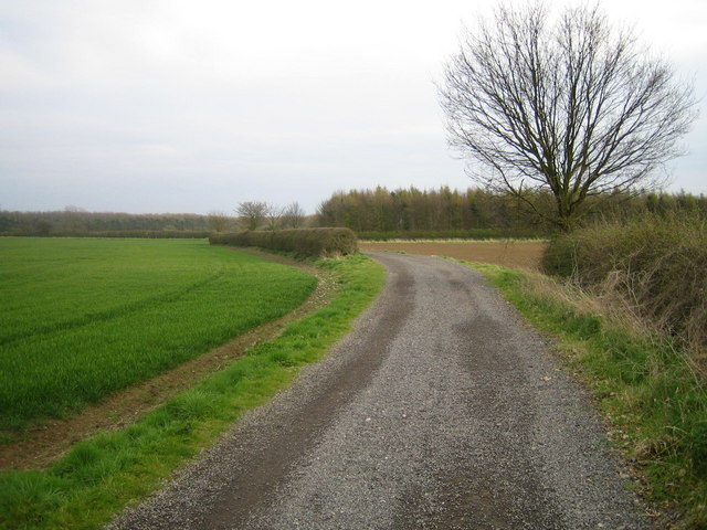 Track to Malborough Farm