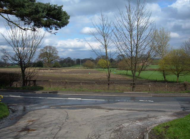 Between Bank and Mere Farms