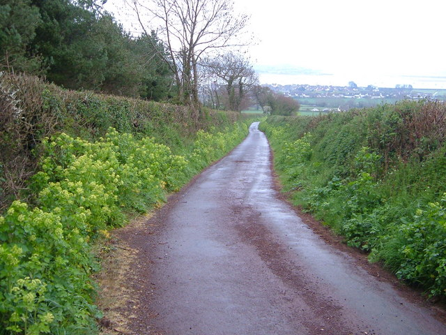 Lane above Starcross
