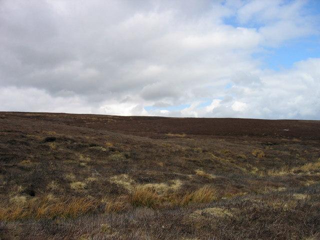 Knockshield Moor from Black Way