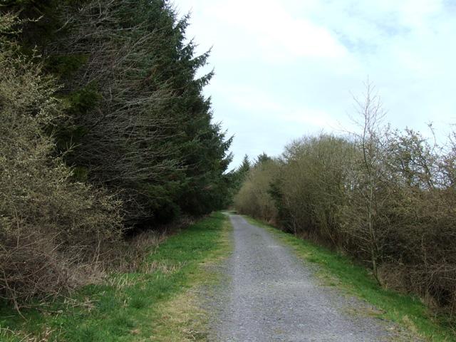 Track alongside the Cefni Reservoir
