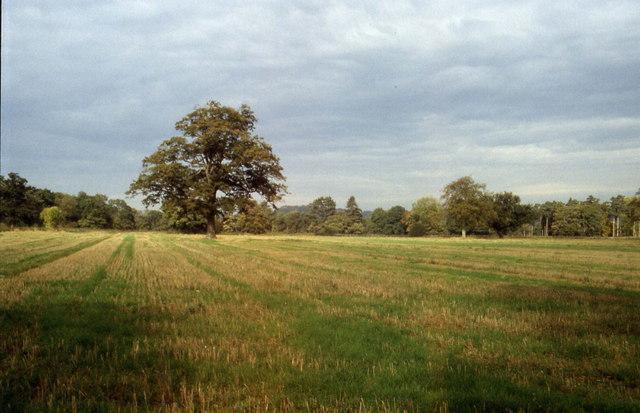 Hardwicke Grange Estate