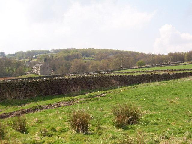 Dacre Pasture