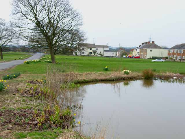 Village green and pond, Hett