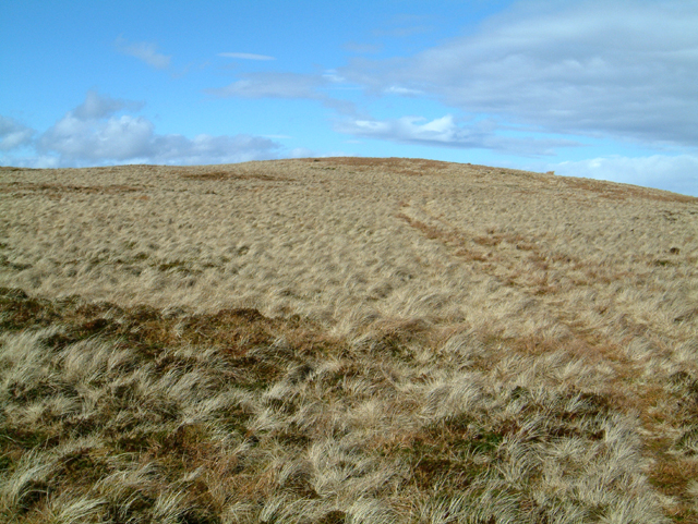 Burnfoot Hill