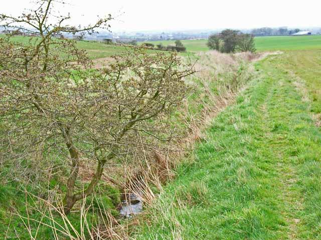 Ditch near Hett Moor Farm