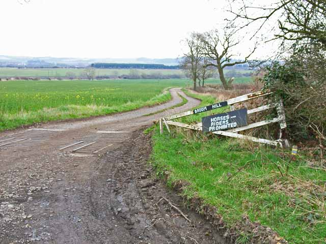 The road to Broom Hill Farm, near Hett
