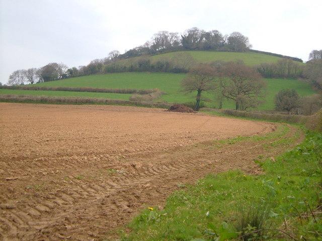 Torcorn Hill