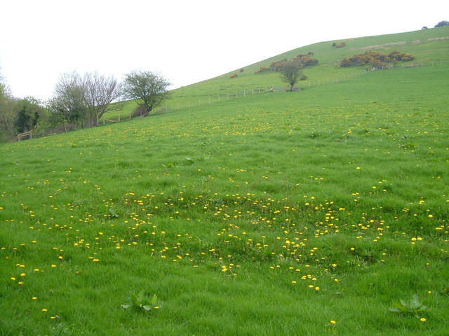 Hill above Stretchford