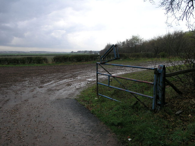 Blue Gate and Mud Track