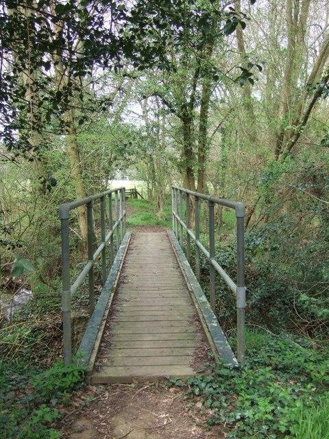 Footbridge in the copse