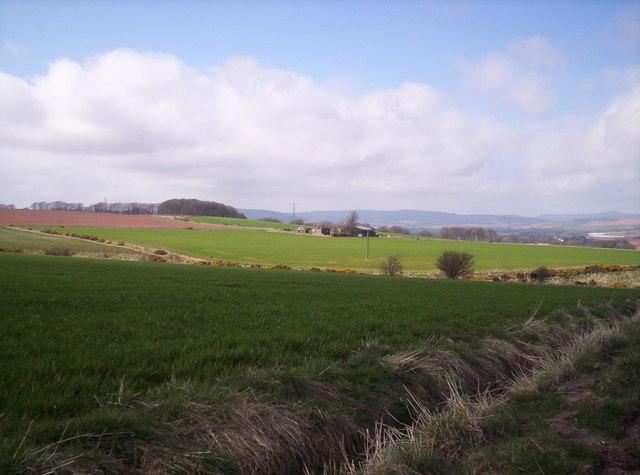 Fields and Thornylea