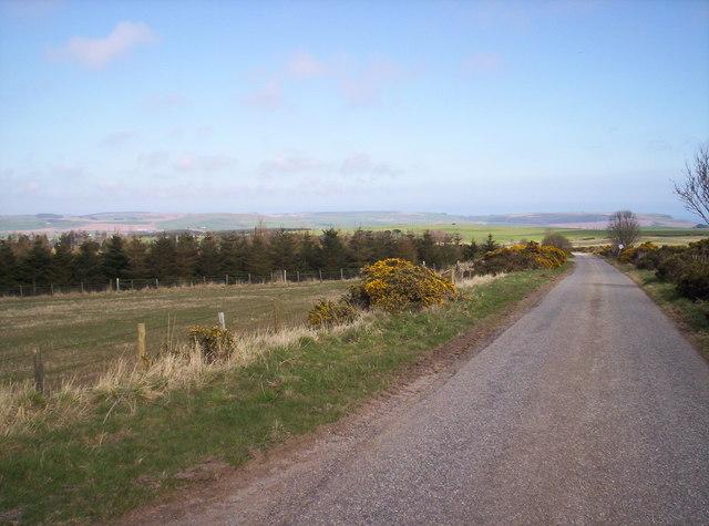 Road Looking East towards Inverbervie