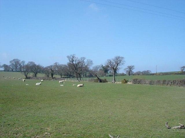Dolwen farmland