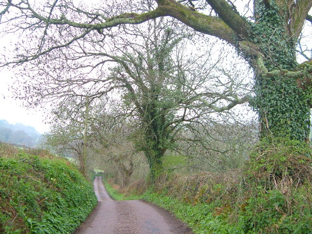 Lane near Thistlemuir