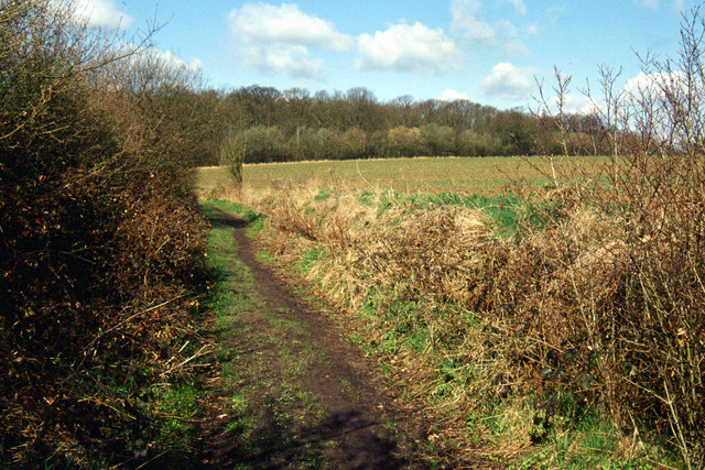 Track north east of Thaxted