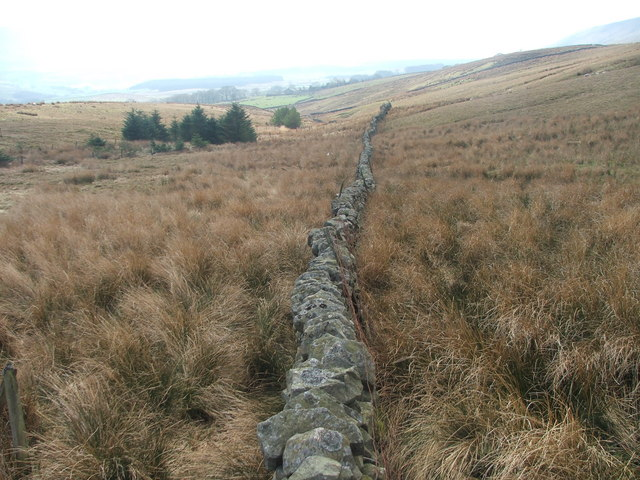 Dry stone wall at the foot of Whernside.