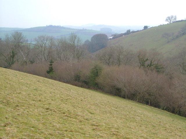 Valley above Colston