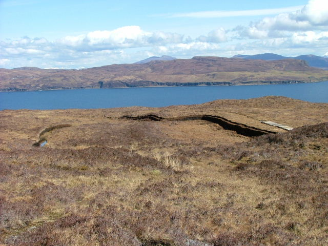 Peat Cuttings