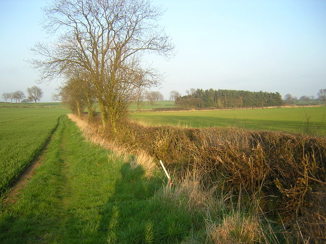 Footpath to Warlaby