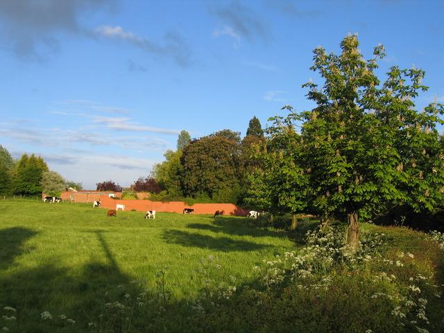 Fields at Wappenbury