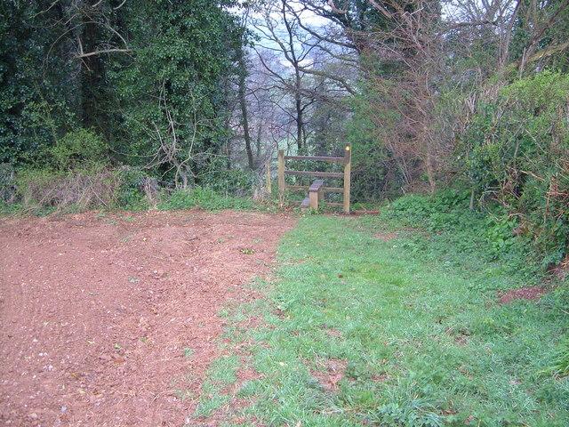 Footpath into wood