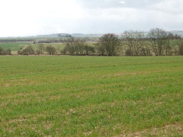 Farmland by Moozie Mill